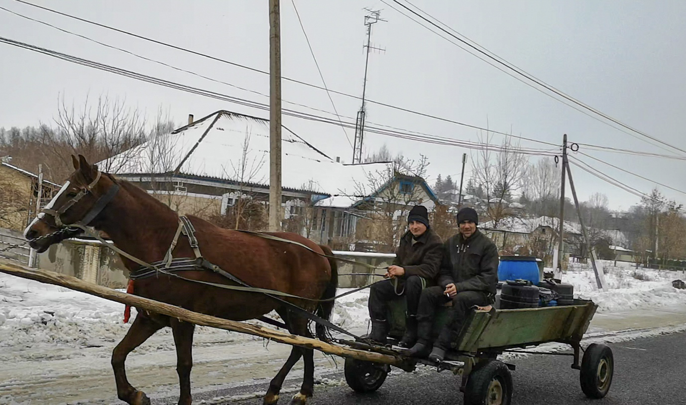 Moldovan Farmers with Horse and Cart near Briceni